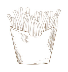 french fries sketch hand drawn sketch vector image