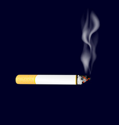smoking cigarette on dark background burning vector image