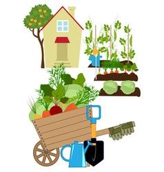 Vegetables garden vector