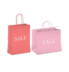 Seasonal sale two shopping bags vector image