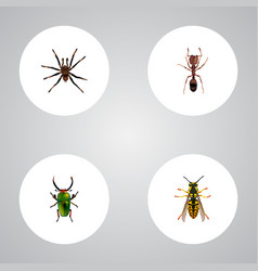 realistic bee insect arachnid and other vector image
