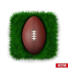Icon Classic rugby ball on green grass vector image
