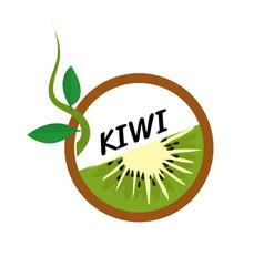 Kiwi fruit icons flat style vector