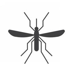 Mousquito Outline Icon vector image