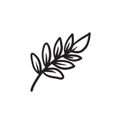 Palm branch sketch icon vector