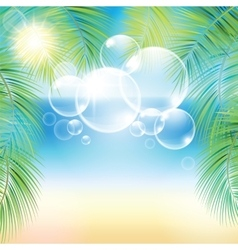 Bubbles above the sand beach and the palm branches vector