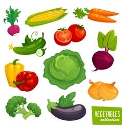 Fresh healthy vegetables collection Cartoon vector image