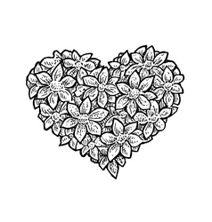 Black and white of the flower vector image vector image