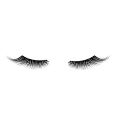 Black false eyelashes mascara single decorative vector