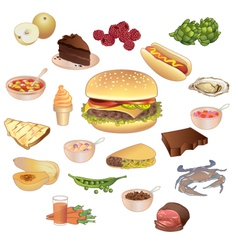 Different kinds of food vector image