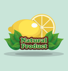 Lemon natural product label vector