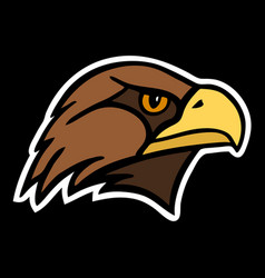 eagle the head of a bird of prey vector image