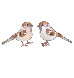 Two sparrows vector