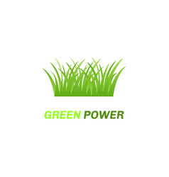abstract eco green logo vector image vector image