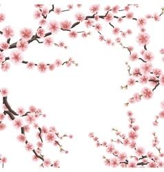 Spring sakura flowers EPS 10 vector image vector image