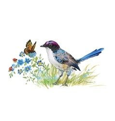 Watercolor colorful bird and butterfly with grass vector