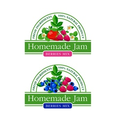 Berries Jam Label Collection vector image
