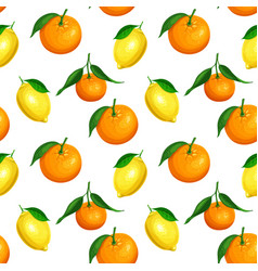 Seamless pattern with citrus vector