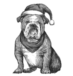 Bulldog with christmas hat vector