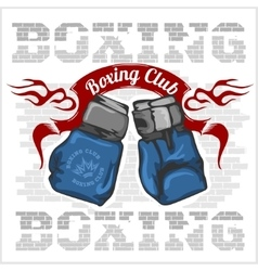 Boxing label and elements in light background vector