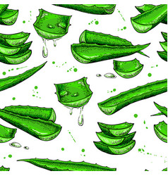 Aloe vera seamless pattern hand drawn vector