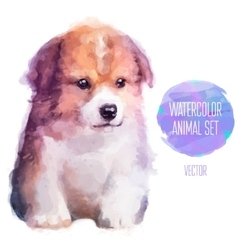 dog hand painted watercolor vector image