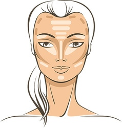 Face Sculpting tutorial vector image