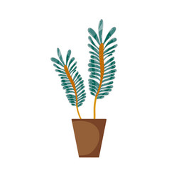 naturals plants inside pot with leaves vector image vector image