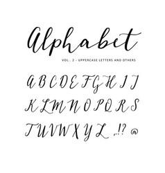 Hand drawn alphabet script font isolated vector