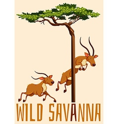 Wild savanna with deer and tree vector