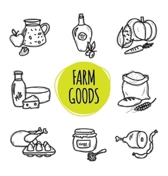 Cute hand drawn collection of organic farm food vector
