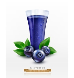 glass cup with juice of blueberries isolated vector image