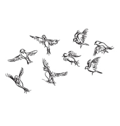 Hand-drawn bird doodles vector image