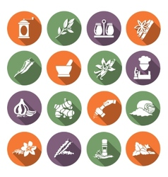 Spices icons flat vector