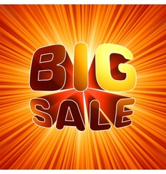 Big sale burst message EPS 8 vector image