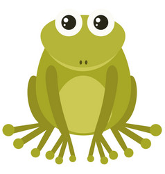 green frog on white background vector image