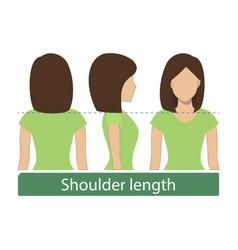 Shoulder length hair vector