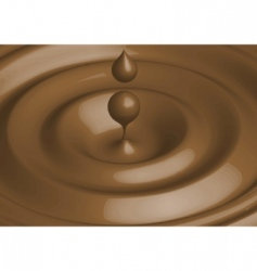 vector chocolate vector image
