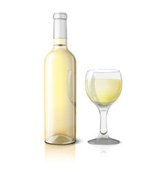 Blank realistic bottle for wine with glass vector
