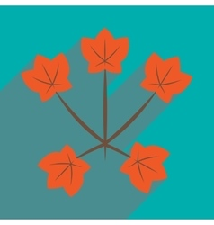 Flat with shadow icon and mobile application maple vector