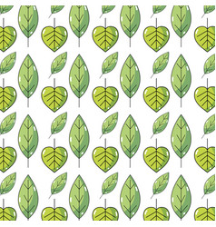 Natural leaf and tropical biology background vector
