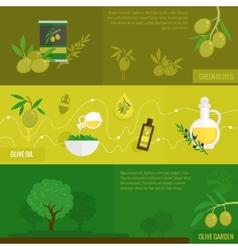 Olives banner set vector image