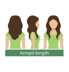 Armpit length hair vector