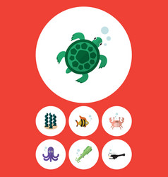 Flat icon sea set of alga octopus seafood and vector
