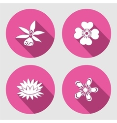 Flower icons set Anemone chamomile forget-me vector image