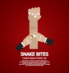 Snake bites on forearm vector