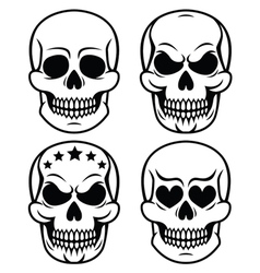 Halloween human skull design day of the dead vector