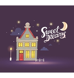 Night house with street lamp and fence on vector