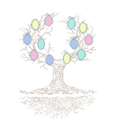 Candy colors genealogical branchy tree vector