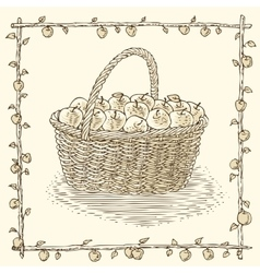 Wicker basket with ripe apples vector